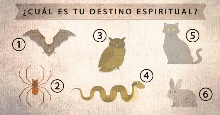¿Cuál es tu destino espiritual? Elige un animal y descubre qué tipo de ayuda necesitarás