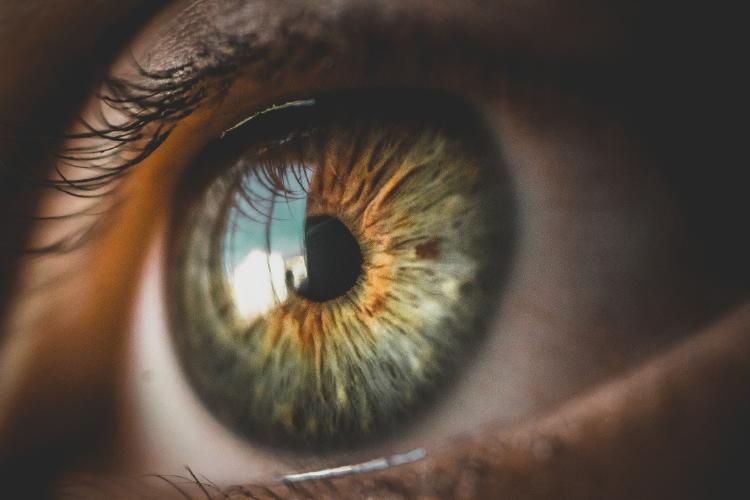 eyes-5248678_1920