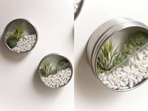 Jardines de aire: un opción sencilla para decorar con naturaleza