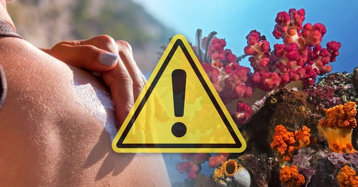 Este producto que usas en el verano sin sentir culpa está matando a los corales