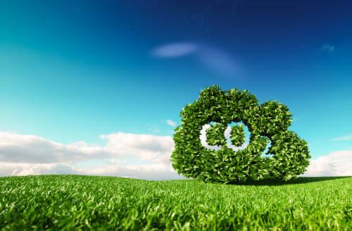 Importante reducción de las emisiones mundiales de carbono por la cuarentena