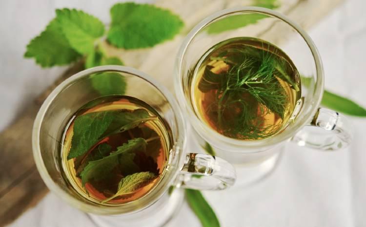Tazas de té con hierbas