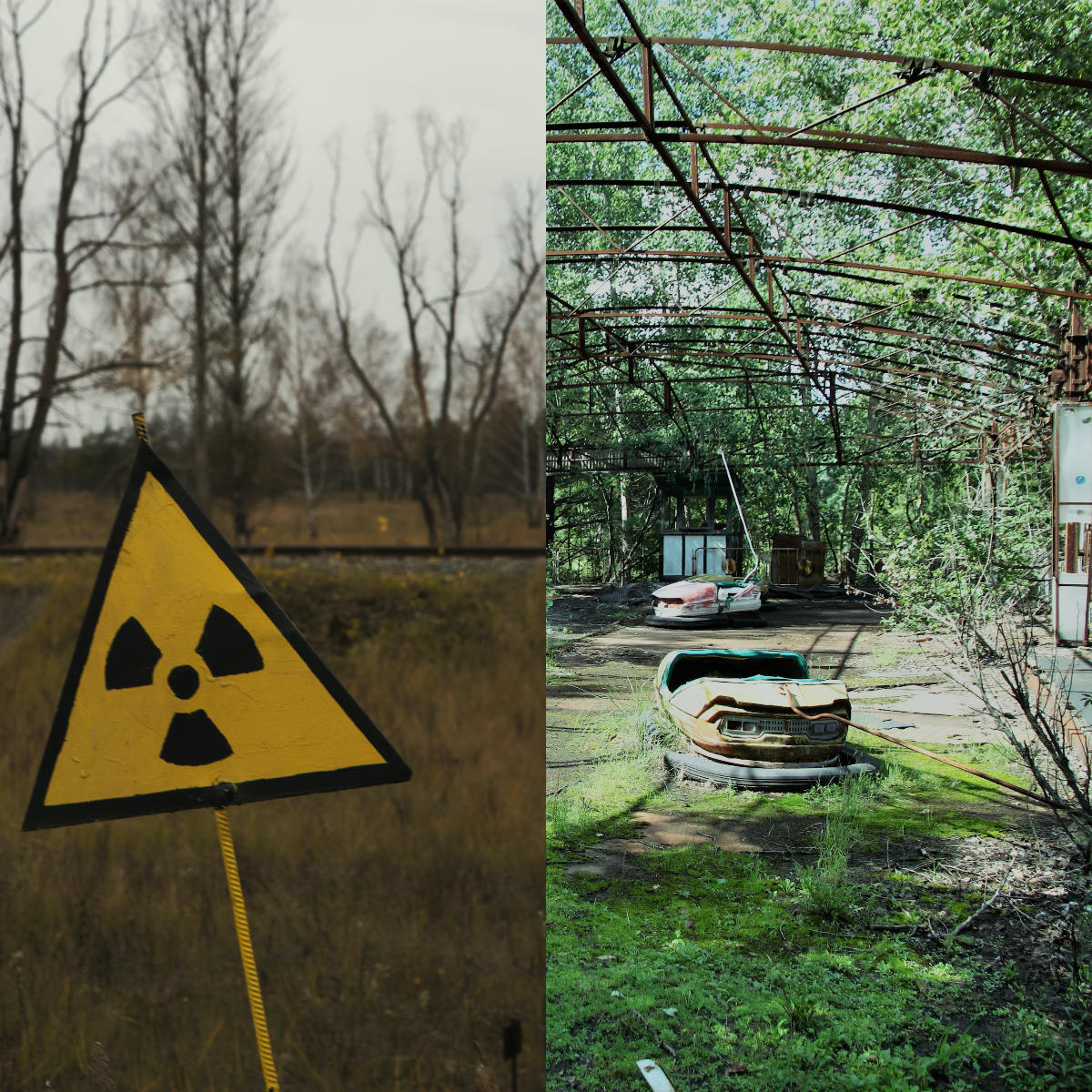 Cinco mitos sobre el desastre nuclear de Chernóbil