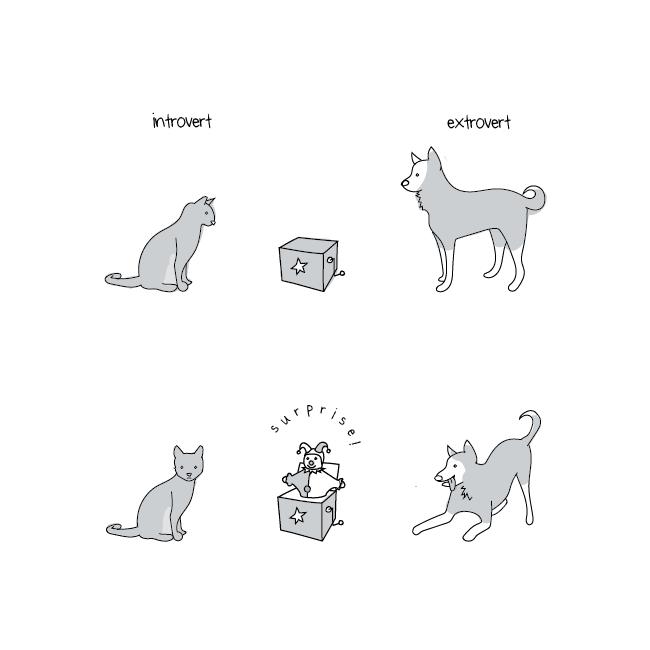 perro extrovertido
