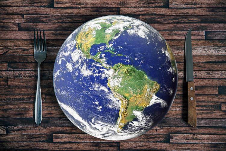 dietas ecológicas