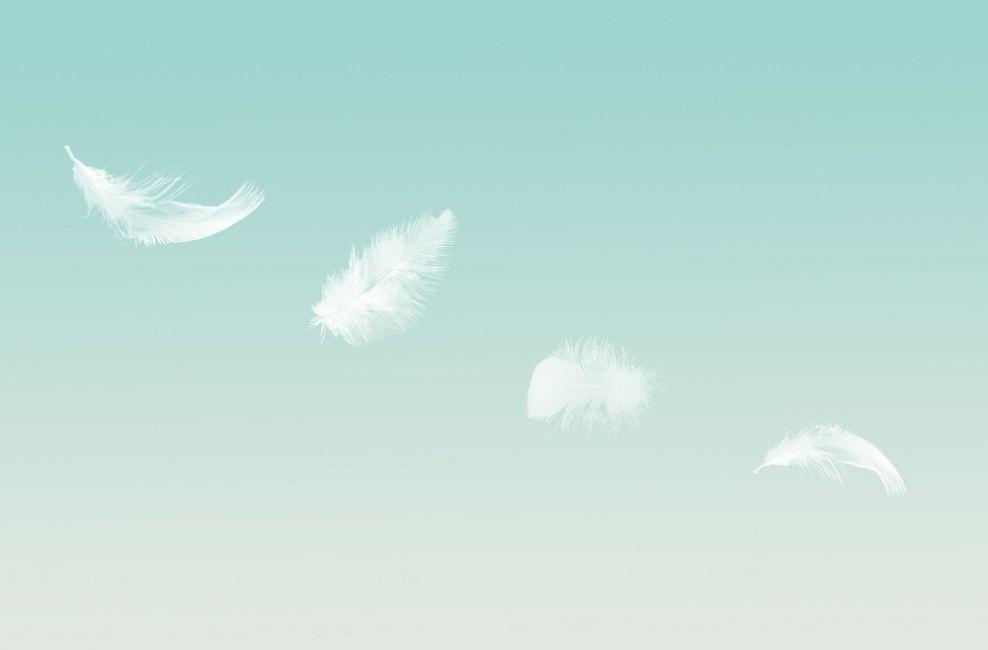 señales de tu ángel