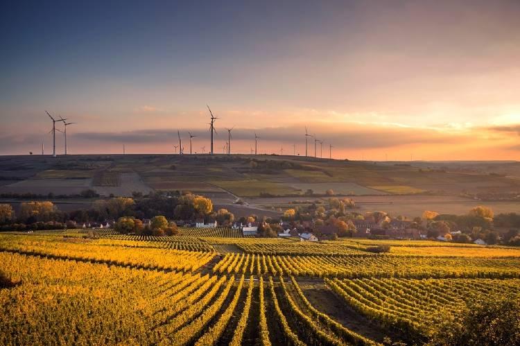 Cuáles son las energías renovables limpias