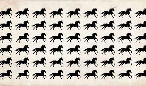 Nadie ha encontrado los caballos diferentes en menos de 30 segundos: fíjate s..
