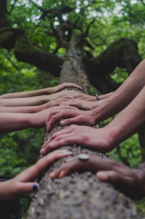 Por qué es importante el valor solidaridad