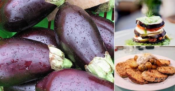 Berenjenas: suaves y nutritivas hortalizas