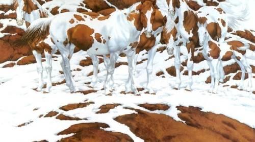 ¿Cuántos caballos ves en esta imagen? La respuesta te revelará algo oculto ..