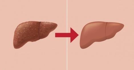 8 alimentos que desintoxican tu cuerpo si los comes a diario durante un mes