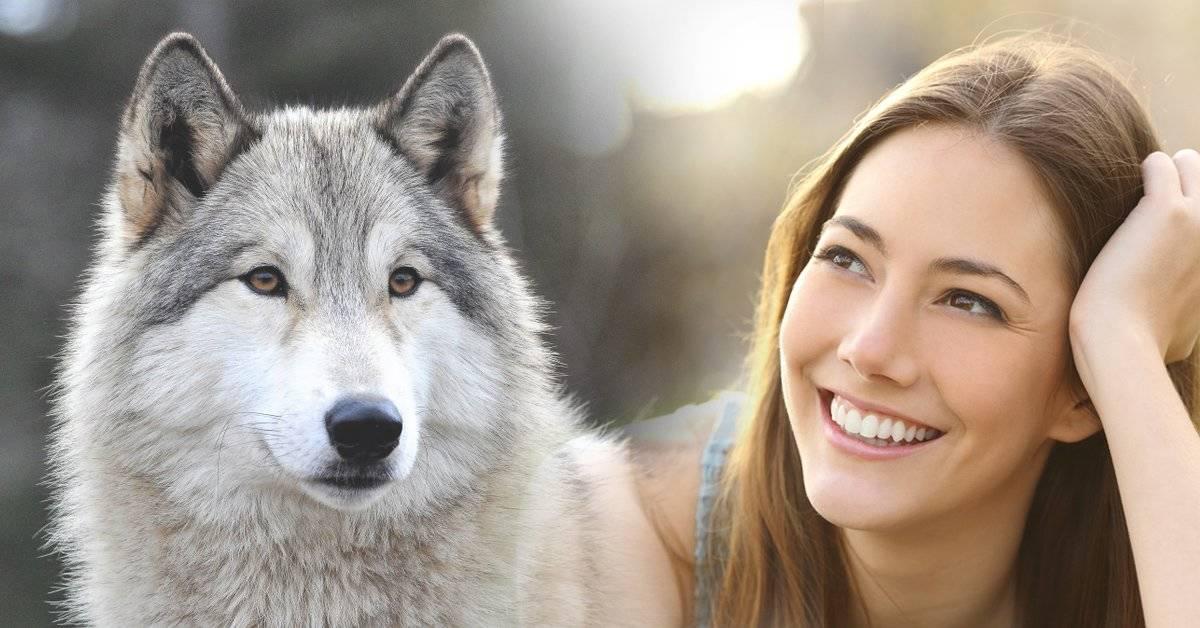 """7 frases del libro """"las mujeres que corren con los lobos"""" para sanar heridas emocionales"""