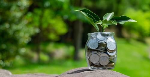 Banca sostenible: el camino imprescindible para la solvencia del sector financie