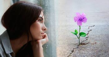 mujer mirando por la ventana, flor buscando la luz a pesar de las adversidades, superarse a uno mismo