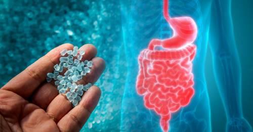 Hay plástico en nuestro organismo... y en nuestros excrementos. Una nueva y asquerosa cara de la contaminación
