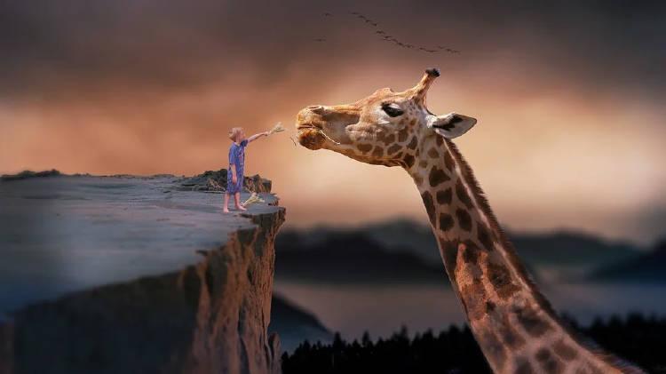 sueño-jirafa