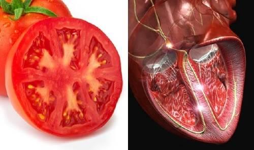 9 alimentos que se parecen a partes del cuerpo, ¡y ayudan a su funcionamiento!