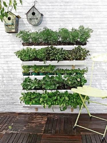 C mo hacer un jard n vertical bioguia - Hacer un jardin ...