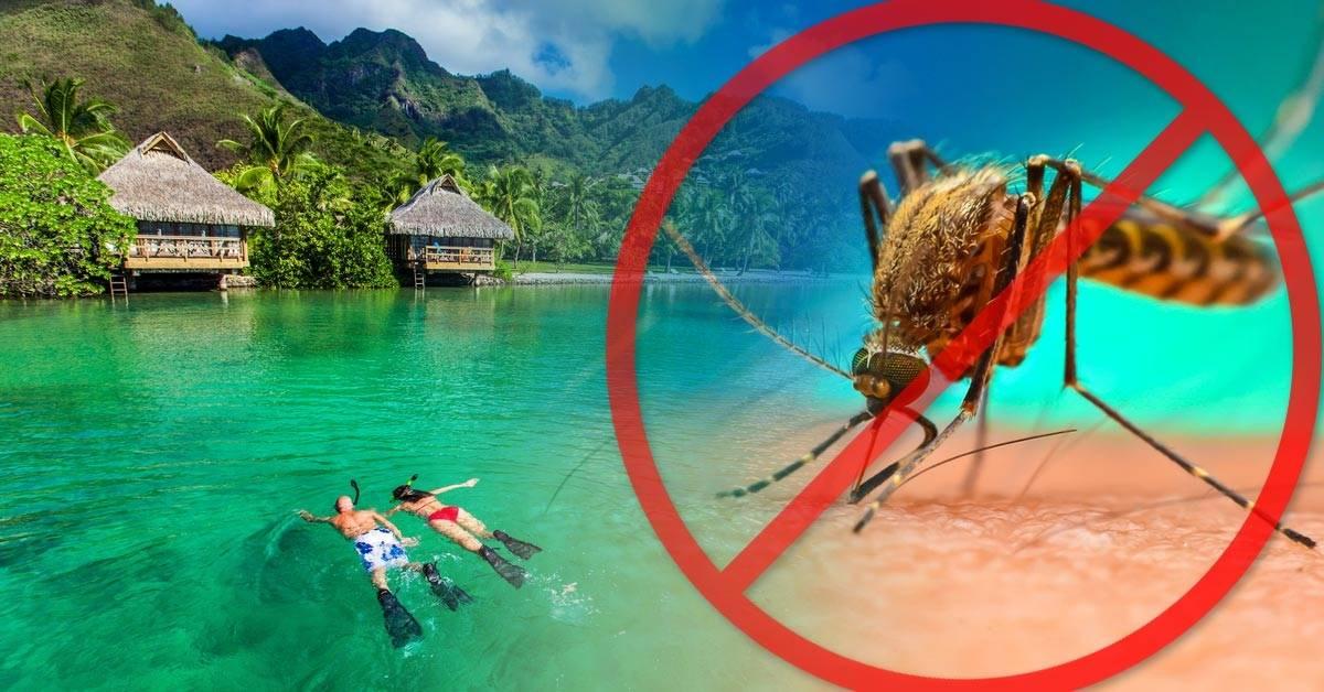 Estos son los únicos lugares del mundo donde no encontrarás mosquitos