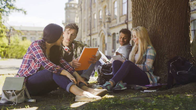 estudiantes universidad