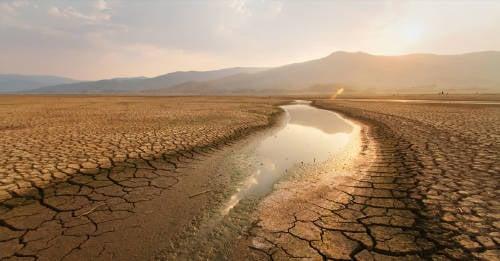 Diálogos por la Tierra: un encuentro para reflexionar sobre la crisis climática