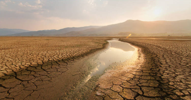 dialogo-tierra-crisis-climatica