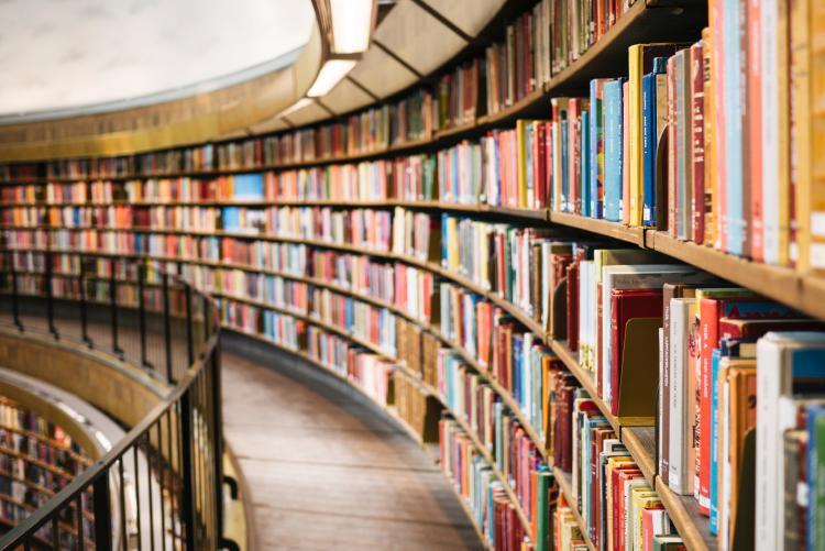 dia-nacional-del-libro-biblioteca-unsplash.