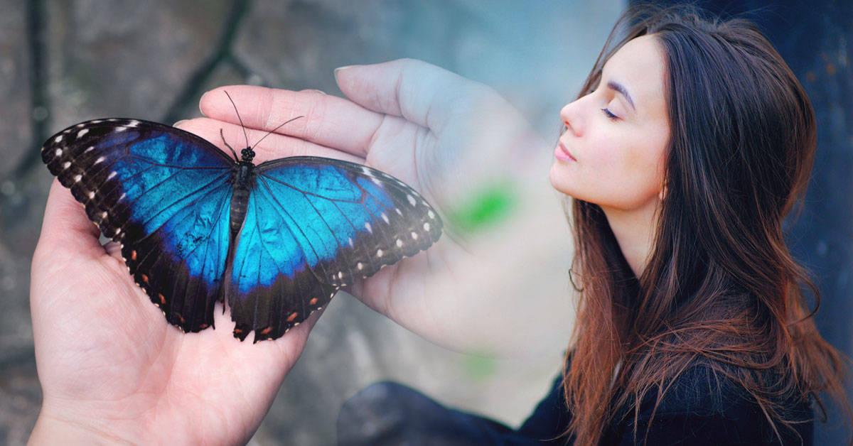 Efecto mariposa: qué es y cómo puedes hacerlo funcionar en tu vida