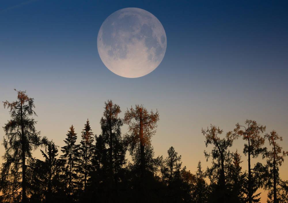 En pocos días podremos apreciar una superluna muy especial