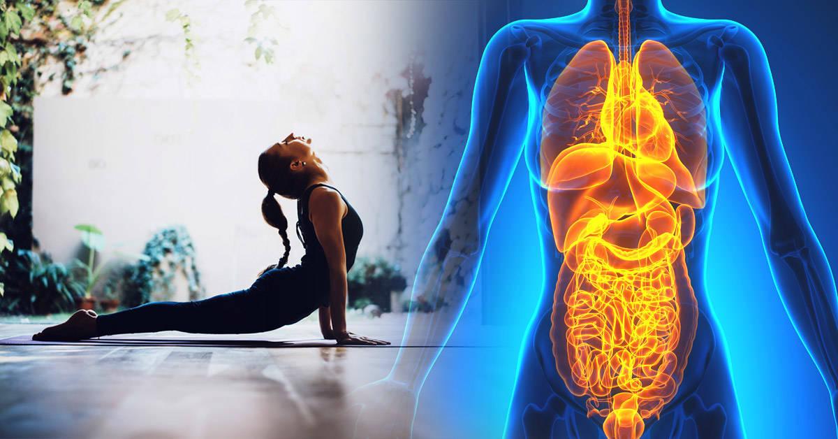 Sencillos ejercicios de yoga para eliminar toxinas de tu cuerpo
