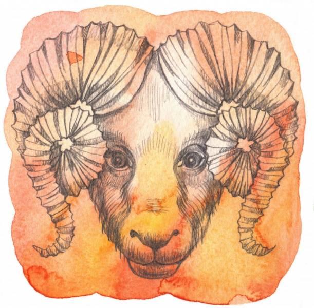 El signo del zodíaco aries