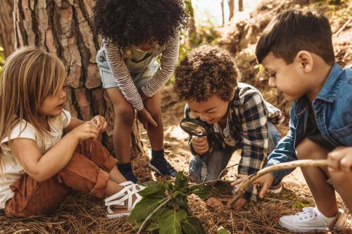 Educación ambiental y sensibilización: la importancia de naturaleza en la niñez