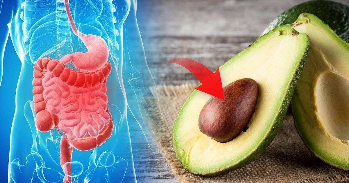 Lo que debes saber antes de comer el carozo de la palta