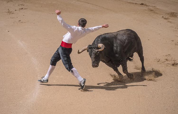 toros españa