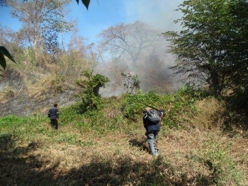 """El Gobierno de Nicaragua decretó el pasado viernes una """"alerta amarilla"""" en diez provincias afectadas por incendios"""