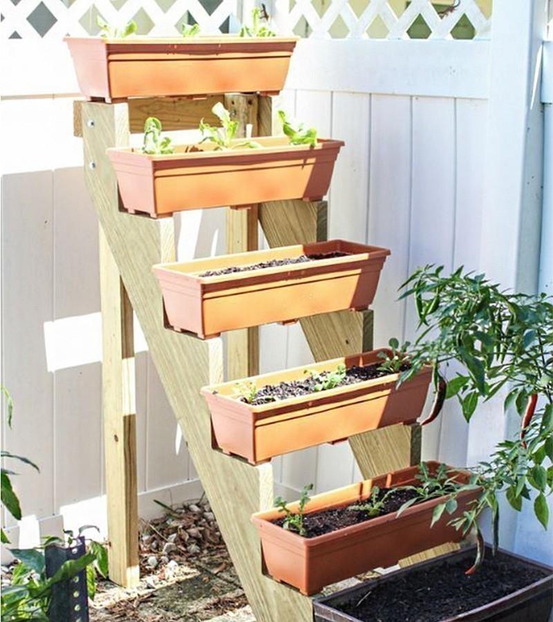 C mo hacer un jard n vertical escalonado for Bioguia jardines