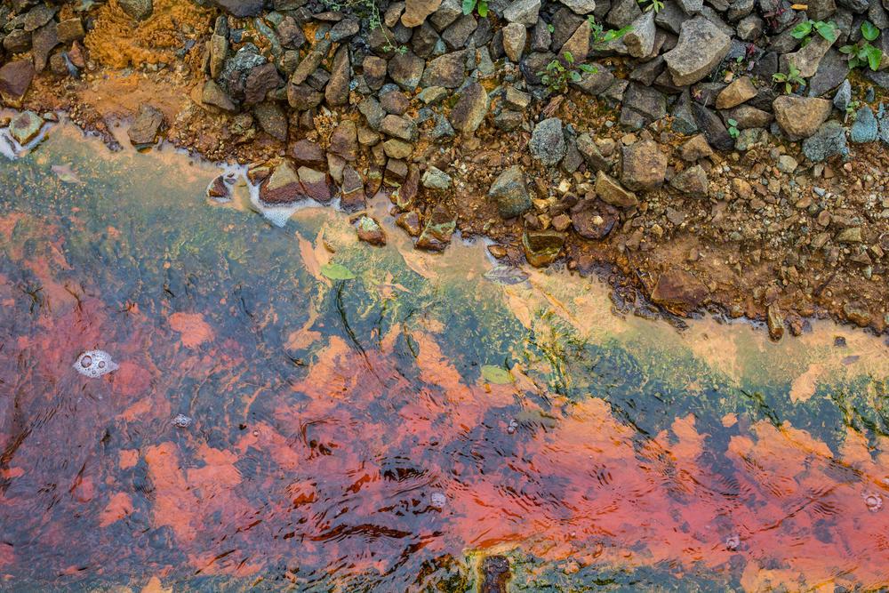 Eutrofización: por qué significa una amenaza para los cuerpos de agua