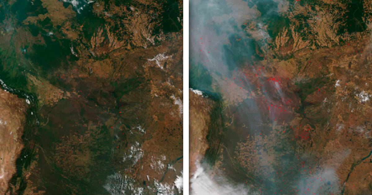 Reportan 1.000 nuevos incendios en el Amazonas