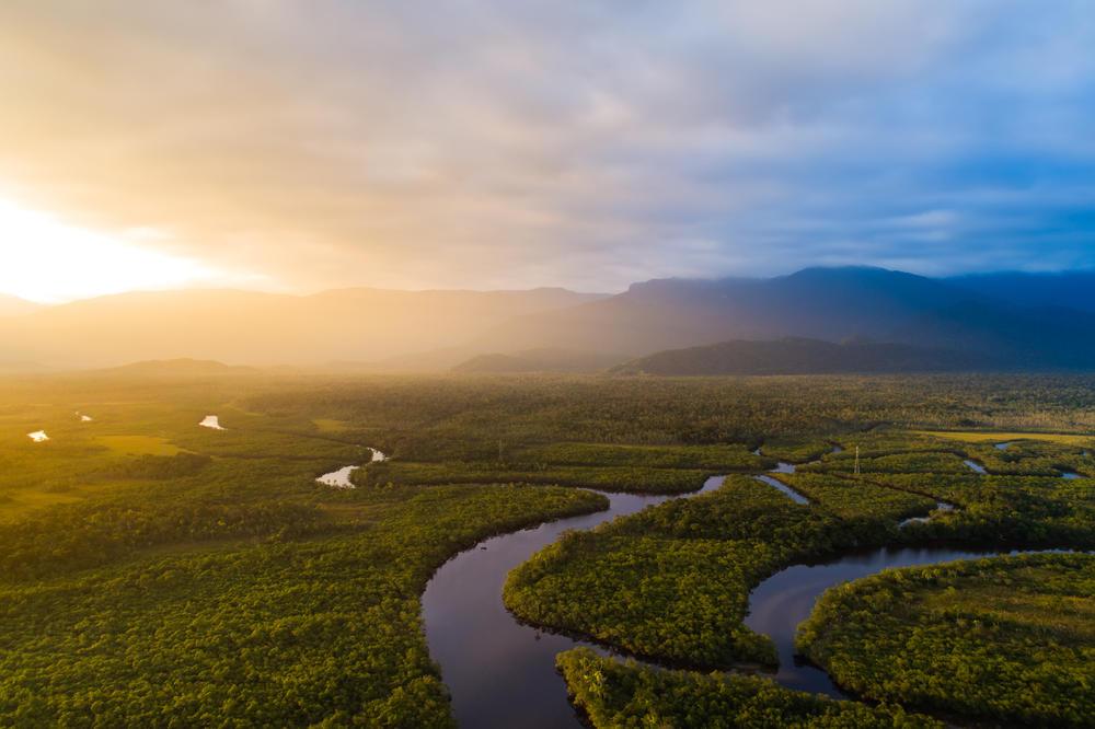 Conocimiento científico internacional unido para preservar la Amazonia