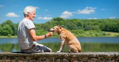 La historia del hombre cascarrabias al que un perro le cambió la vida