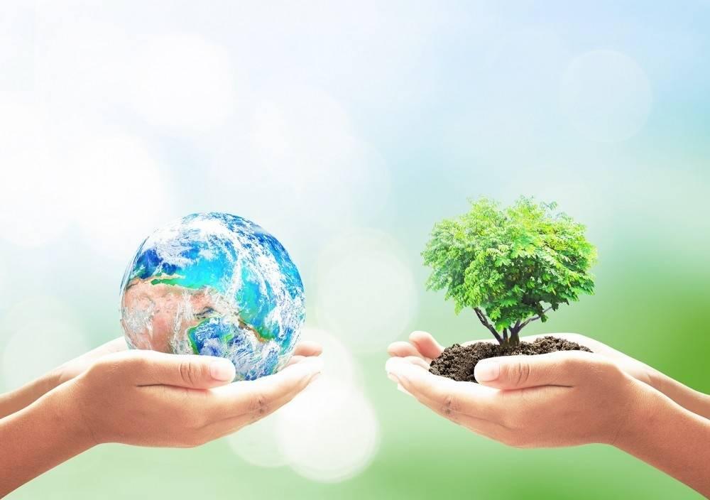 Cuidar el medio ambiente: reciclar, reutilizar y reducir basura