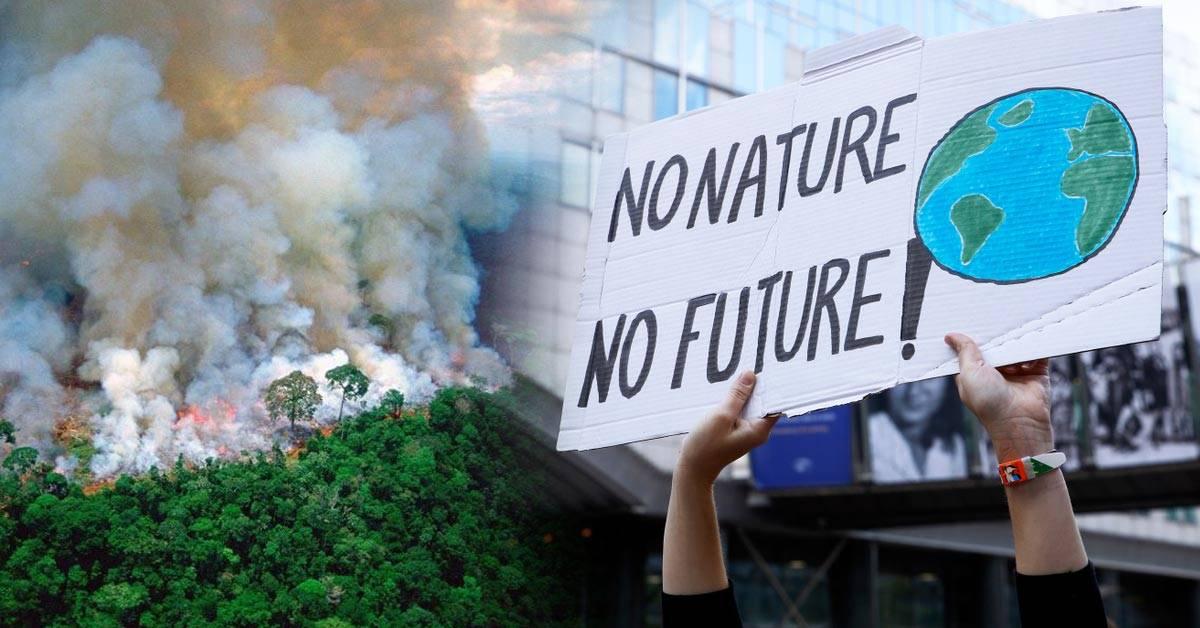 Amazonas: jóvenes de todo el mundo se reunirán frente a las embajadas de Brasil