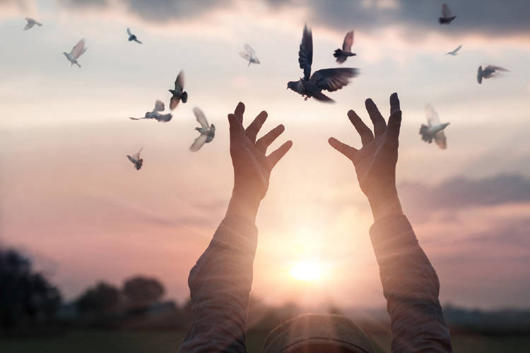 Manos al cielo y pájaros volando