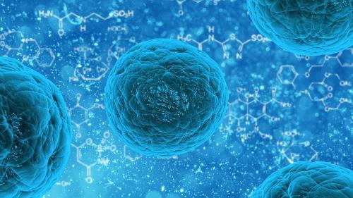 Qué es el norovirus: el virus del vómito que es altamente contagioso