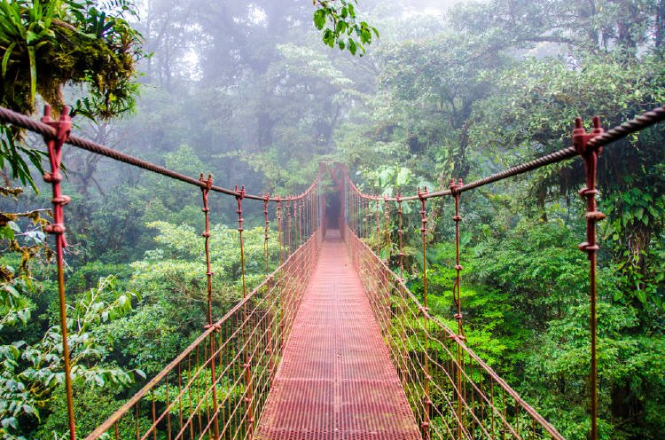Este es el plan de Costa Rica para reducir sus emisiones de carbono