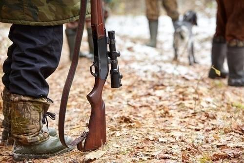 Argentina: Mataron en Misiones a un Yaguareté que estaba protegido