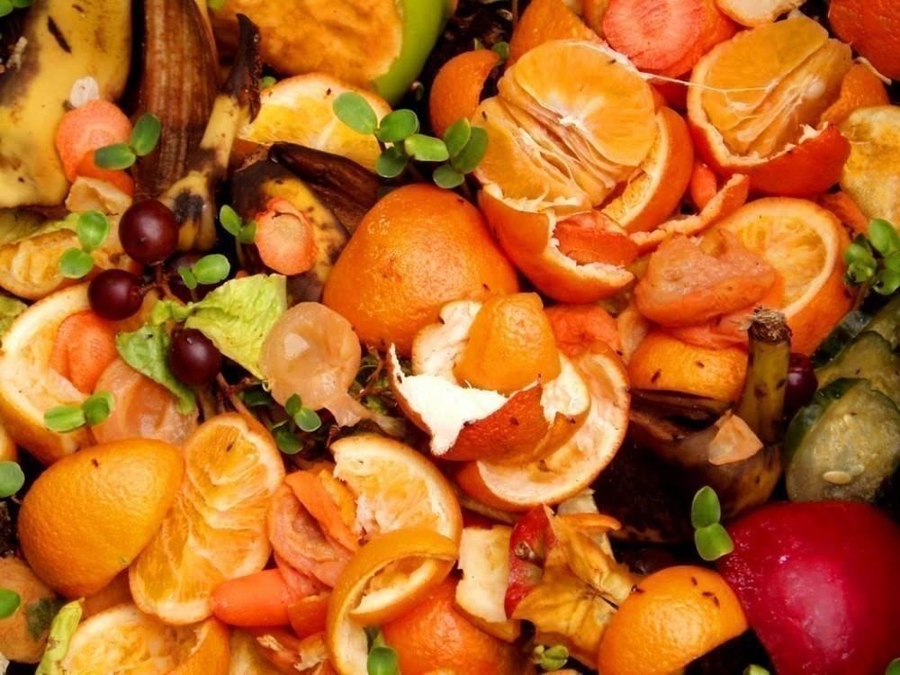 Una ley impide que en Italia se derroche la comida