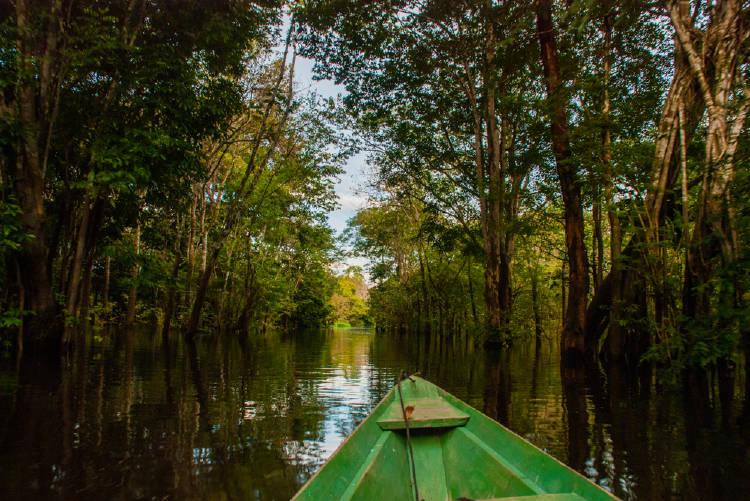 rio amanazonas