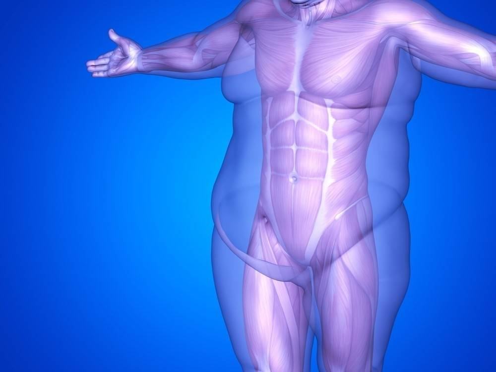 4 claves para perder peso sin afectar tu salud